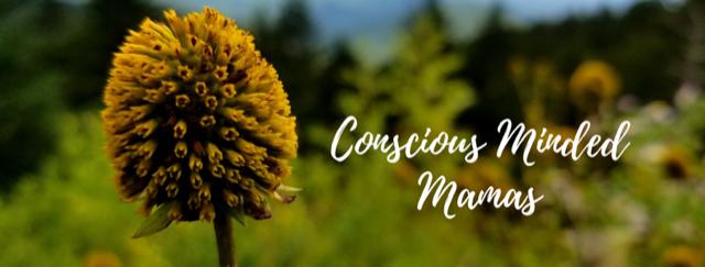 conscious minded mamas