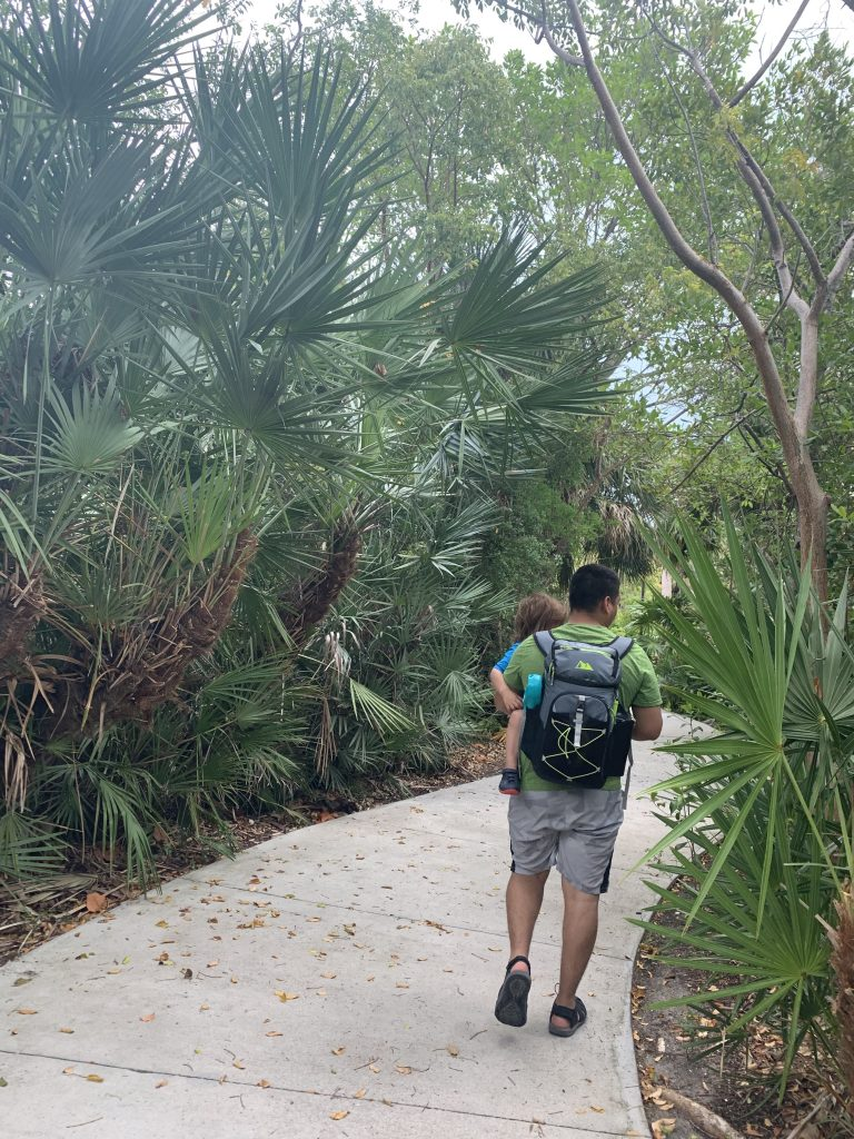 Dad holding toddler while walking on trail
