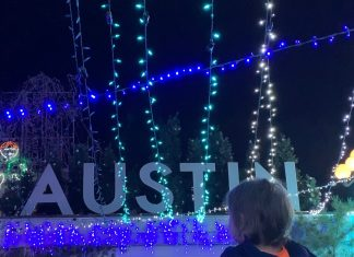 things to do in Austin with toddlers Mozarts