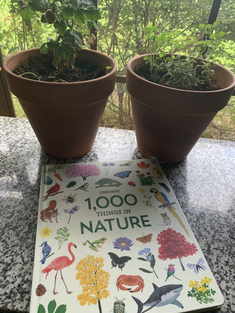 best usborne books nature